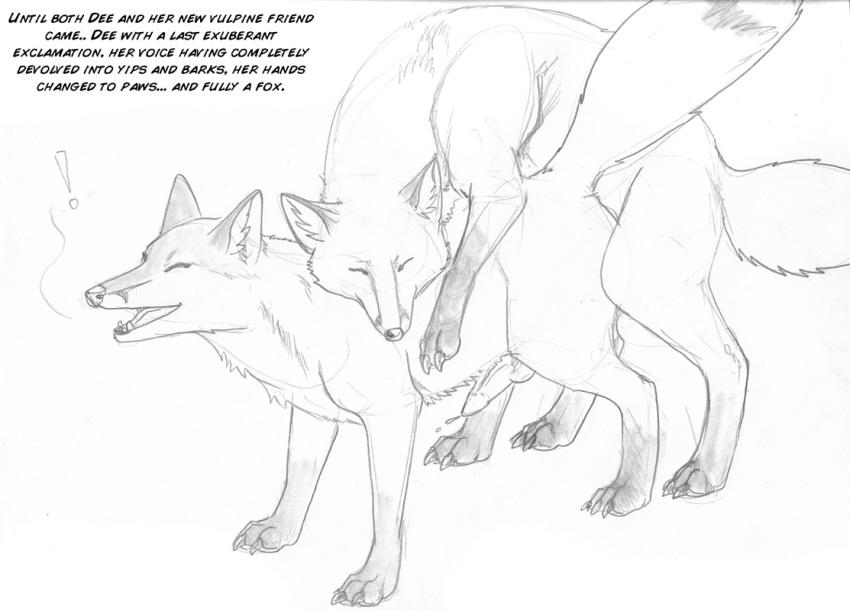 arania net htm tf_main kamiki Bloody roar yugo the wolf