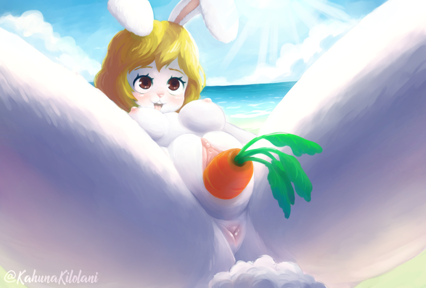 nami piece one Five nights at freddy's hentia